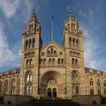 Museu de Natural History em Londres