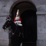 Horse guards em Londres